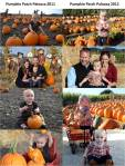Pumpkin Patch Comparison 2011 to 2012